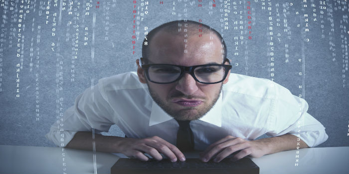Career Options for a Senior Software Developer